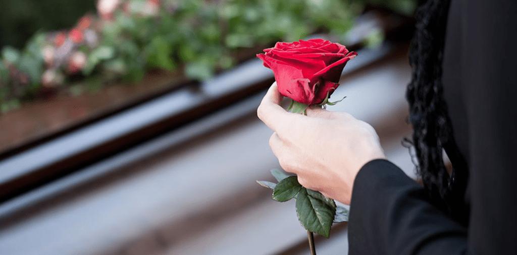 Respectful Rose